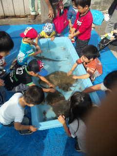 魚庭(なにわ)の海づくり大会2