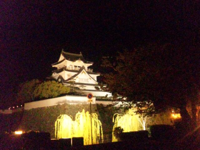 岸和田城夜桜