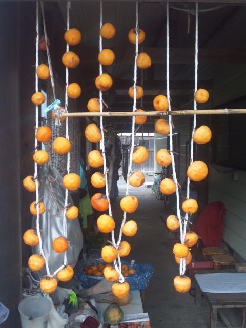 晩秋 干し柿