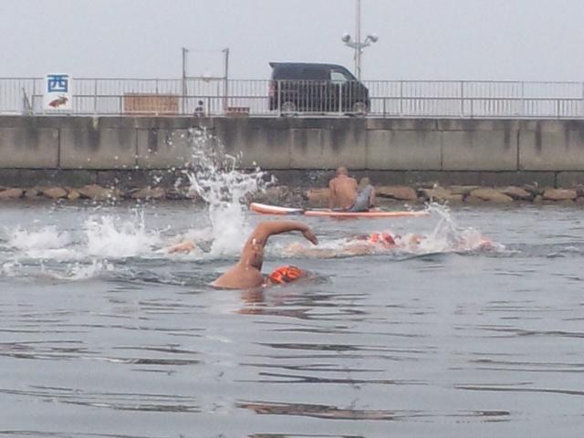 第三回大阪せんなんオープンウォータースイムレース・完泳