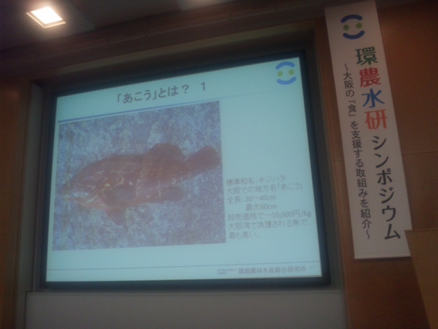 環農水研シンポジウム