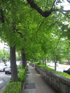 大阪府議会5月定例会
