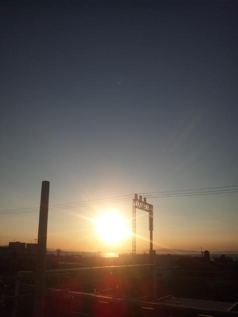 大阪夏の陣・本日の夕立は、