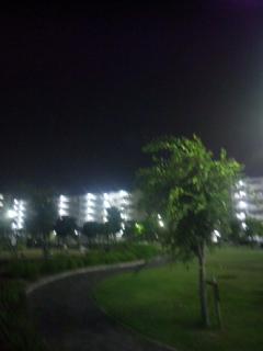 大阪夏の陣・七夕の夜は長く