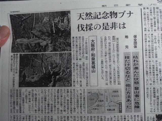 本日の最終は、貝塚市役所にて、和泉葛城山のブナの伐採(<br />  昨日の朝日新聞夕刊)<br />  について