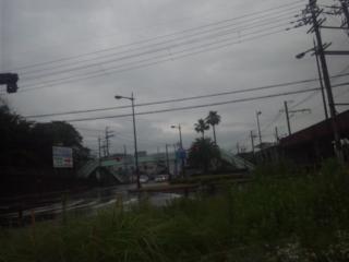 本日の朝立は、岬町の深日町駅にて、大阪府政報告書5月号の配布