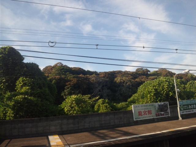 淡輪駅のすぐ山手は、古墳 宮内庁の管理地です!