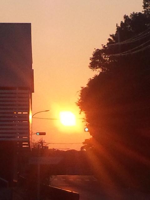 おはようございます!本日の朝立は、泉南市にある新家駅へ