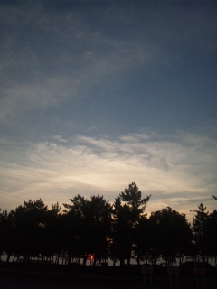 いつもなら雨空でこんな遅くに日の入りしている実感に乏しいのですが、今年は、