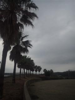 田倉崎灯台まで