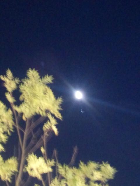 7月始まり 今宵は、月がきれいで 選挙運動時間終了!お疲れ様でした!