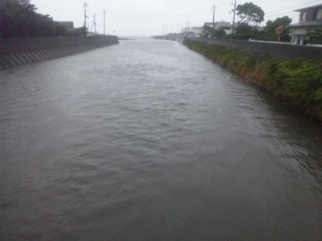 水産技術センター横の岬町・東川と西川