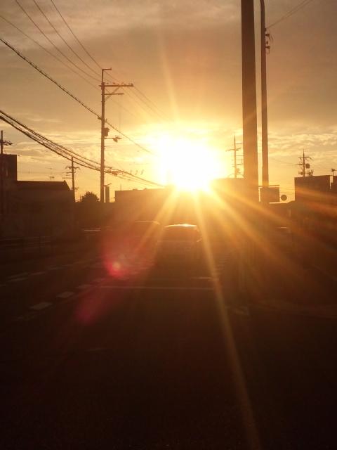 本日も、堺で夕暮れ
