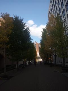 第37回近畿高等学校総合文化祭大阪大会 時代を造ろう文化のチカラ 総合開会式