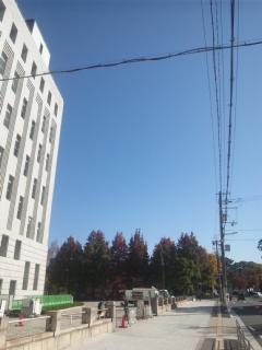 大阪府庁の議員控室です!