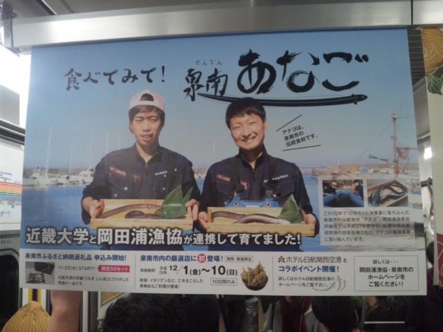 南海電車に「泉南あなご」のつり革広告