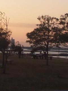 都市公園では、子どもたちの凧あげとランニング・筋トレ女子たち