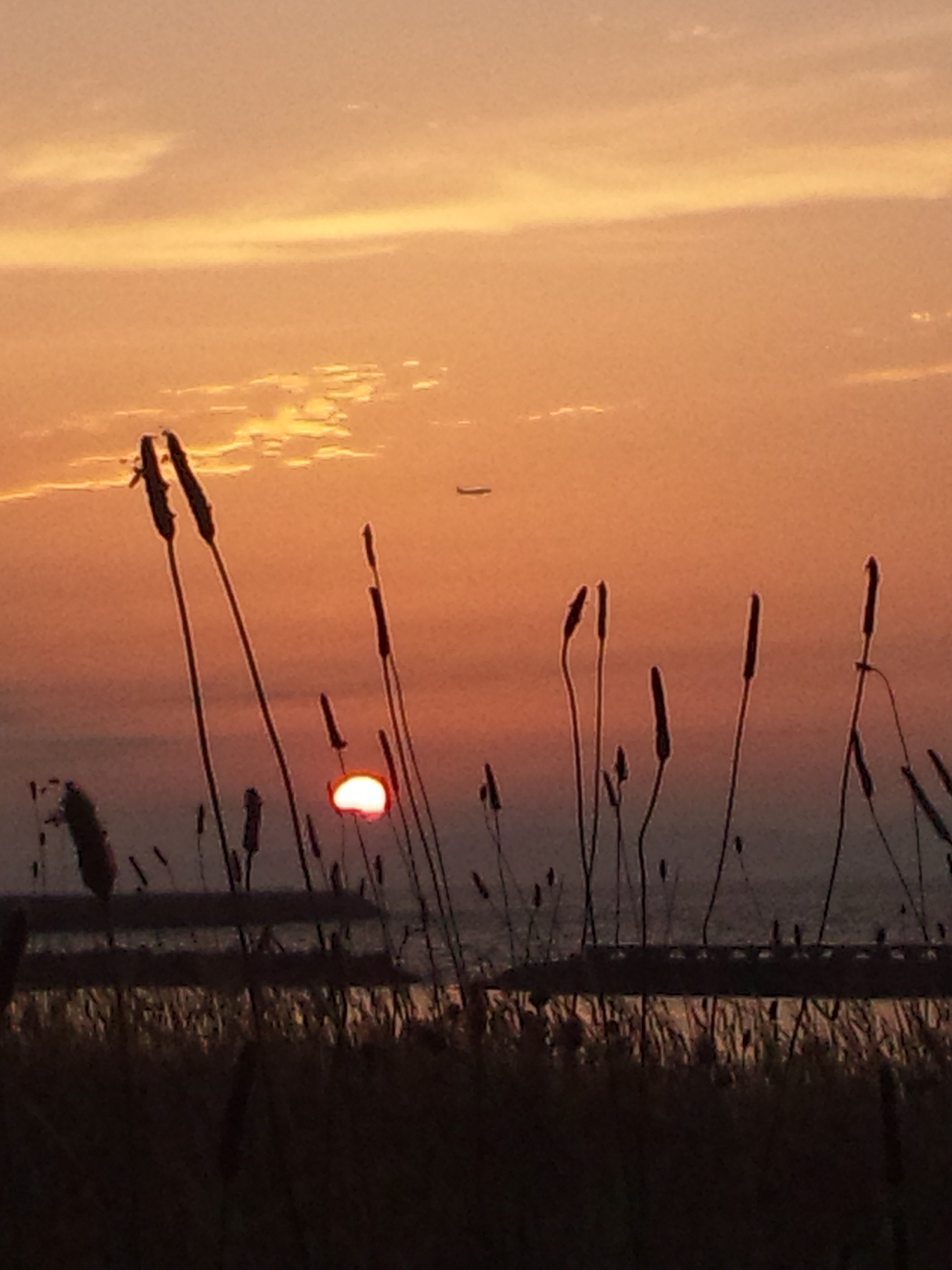 19時過ぎての日の入り 今年も、もうすぐ夏至