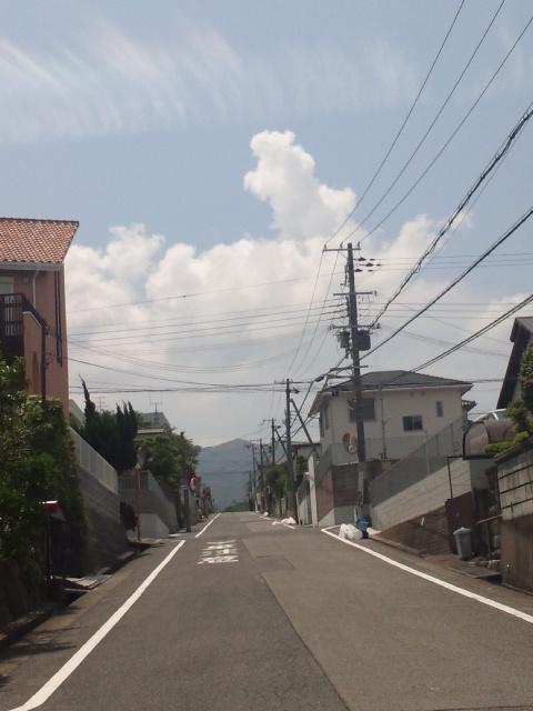 暑い!大阪府庁へ向かっています、打合せ